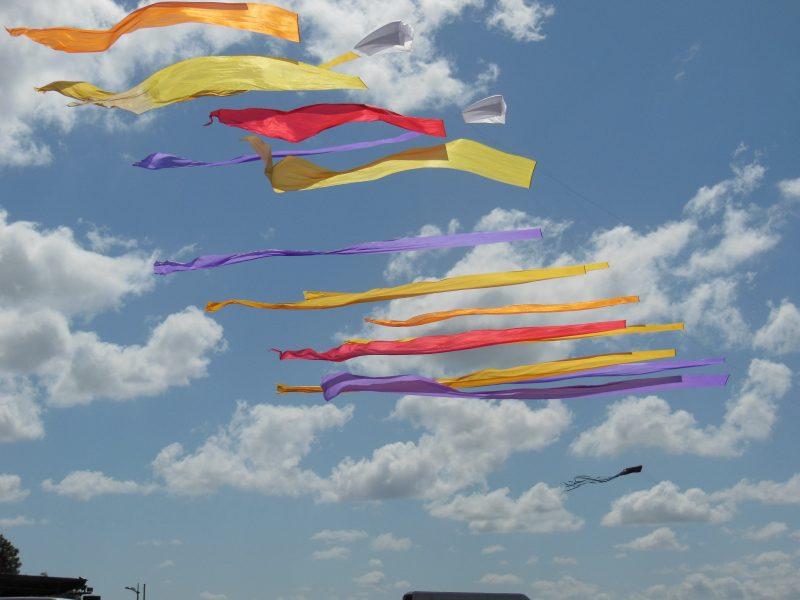 Les cerfs-volants de Kosmodul'air